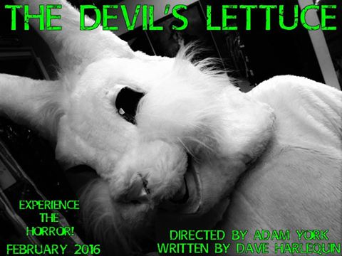 devils lettuce